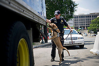 UNITED STATES - JULY 19: U.S. Capitol Police K9 Technician Andrew Maybo investigates a truck entering the Capitol grounds with his explosive detector dog Vandy. The officers spend their day at a variety of posts or mobile shifts, and do sweeps throughout the area everyday. The K9 unit has been expanding its scope for Congressional security in recent years, and also working with other police agencies.