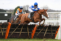 Sirop De Menthe ridden by Lucy Gardner and trained by Susan Gardner jump the last in The Extech Cloud-Humanising It Handicap Hurdle ahead of the eventual winner Hawthorn Cottage ridden by Lucy K Barry and trained by Amy Murphy during Horse Racing at Plumpton Racecourse on 10th February 2020