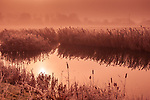 Mist hanging over water meadows in Suffolk England in winter