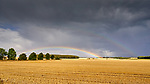 Pix: Shaun Flannery/shaunflanneryphotography.com<br /> <br /> COPYRIGHT PICTURE>>SHAUN FLANNERY>01302-570814>>07778315553>><br /> <br /> 24th August 2018<br /> Rainbow over a ploughed corn field, High Melton, Doncaster