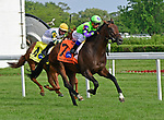 August 10, 2019: Valid Point, trained by Chad Brown, wins the Beverly D Stakes (G1) at Arlington Park on August 10, 2019 in Arlington Heights, IL. Jessica Morgan/ESW/CSM