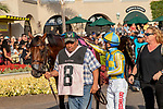 DEL MAR, CA  SEPTEMBER 2:  #8 Ride a Comet, in the paddock before the  Del Mar Derby (Grade ll) on September 2, 2018 at Del Mar Thoroughbred Club in Del Mar, CA.(Photo by Casey Phillips/Eclipse Sportswire/Getty ImagesGetty Images