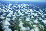 Amazonia, Brazil. Aerial view of unbroken forest seen through a layer of broken cloud.