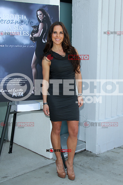 Kate del Castillo during the PETA billboard 'Fiercely Protect Your Animals' unveiling ceremony at The Bob Barker Building on May 10, 2012 in Los Angeles, California. © mpi27/MediaPunch Inc