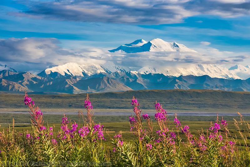 North America's tallest peak, Denali National Park, Alaska.