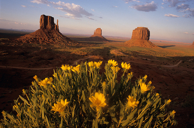 Monument Valley, reserve indienne Navajo. *** Monument Valley, Navajo indian reservation, Arizona.