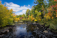 Autumn on the East Fork of the Chippewa River