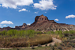 The muddy San Rafael River and Assembly Hall Peak at right with Window Blind Peak behind in the Mexican Mountain Wilderness Study Area on the San Rafael Swell in Utah.  Cottonwood trees grow along the river.