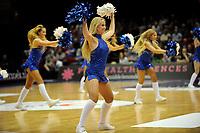 GRONINGEN - Basketbal, Donar - Vitautas, Champions League,  seizoen 2017-2018, 19-09-2017, cheerleaders bij Donar