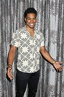 LOS ANGELES - AUG 20:  Rome Flynn at the Bold and the Beautiful Fan Event 2017 at the Marriott Burbank Convention Center on August 20, 2017 in Burbank, CA