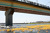 Spectators on a bridge watch some of the fifteen thousand rubber ducks that are emptied in to the Sakawa River during  the Ashigara River festival, Kintaro duck-race in Matsuda, Kanagawa, Japan April 25th 2010