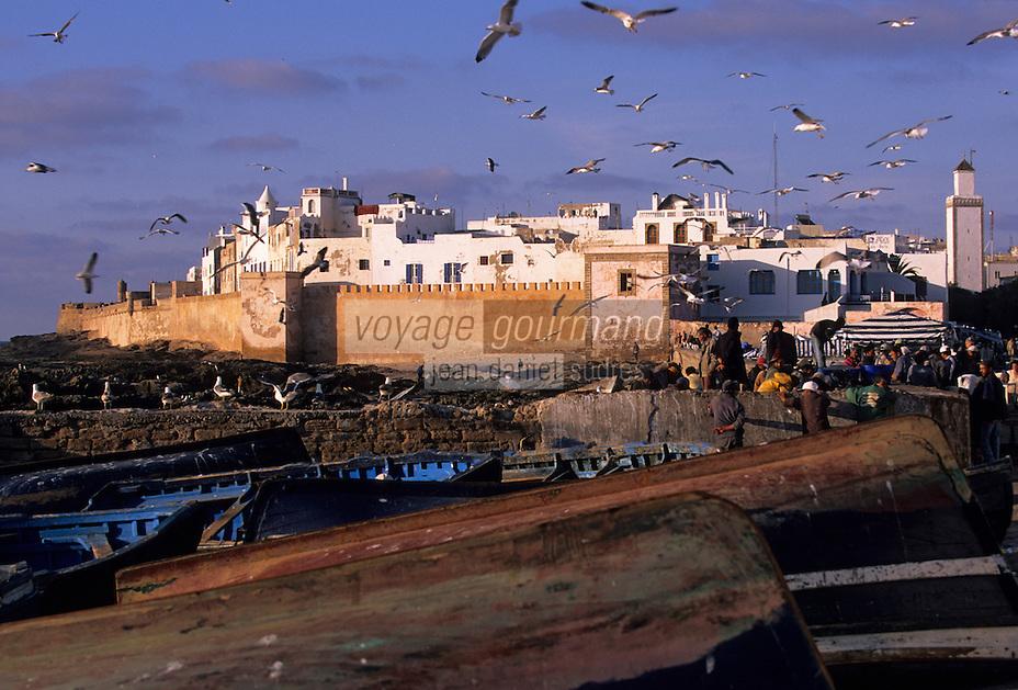 Afrique/Maghreb/Maroc/Essaouira : Les pêcheurs trient leur pêche parmi les mouettes surle port de pêche en fond la cité