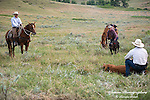 A photo of three cowboys with calves during a branding. Cowboy Photos, riding,roping,horseback