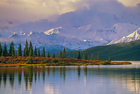 Autumn tundra, Wonder Lake, Alaska mountain range, Denali National Park, Alaska.