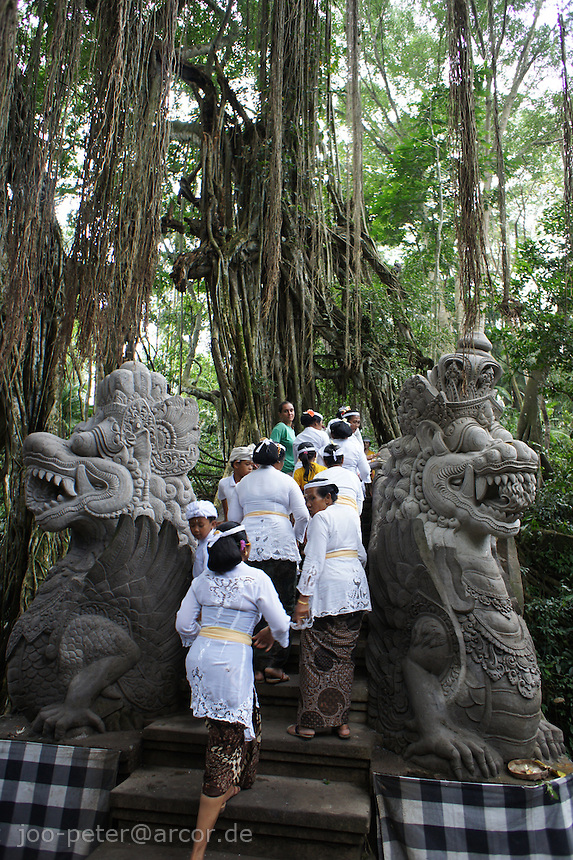 women crossing bridge in holy monkey forest during special ceremonies in temples and shrines in the forest, Ubud, Bali, archipelago Indonesia, 2010