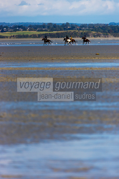 France, Manche (50), , classé Patrimoine Mondial de l' UNESCO,  Traversée de la baie du Mont Saint-Michel à cheval  //  France, Manche, the Bay of Mont Saint Michel, listed as World Heritage by UNESCO,  Crossing the Bay of Mont Saint-Michel on horseback