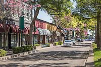 Downtown Fullerton on Harbor Blvd