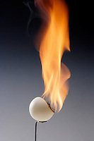 CELLULOID PING PONG BALL BURNS RAPIDLY<br /> (Variations Available).<br /> Nitrocellulose Products Are Highly Inflammable<br /> Cellulose mononitrate, cellulose dinitrate, and cellulose trinitrate are the forms of nitrocellulose, one of the first man made polymers. Because it was so unstable, camphor was added to amend the problem of detonation.
