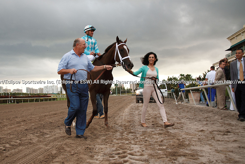 Channel Lady and connections head to the winners circle after winning the Suwannee River (G3) at Gulfstream Park. Hallandale Beach Florida. 02-09-2013