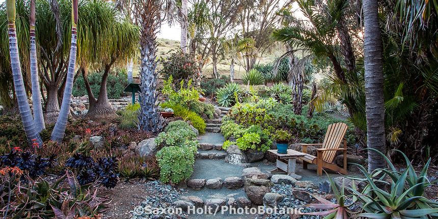 Pathway through Mediterranean section of Leaning Pine Arboretum, California garden