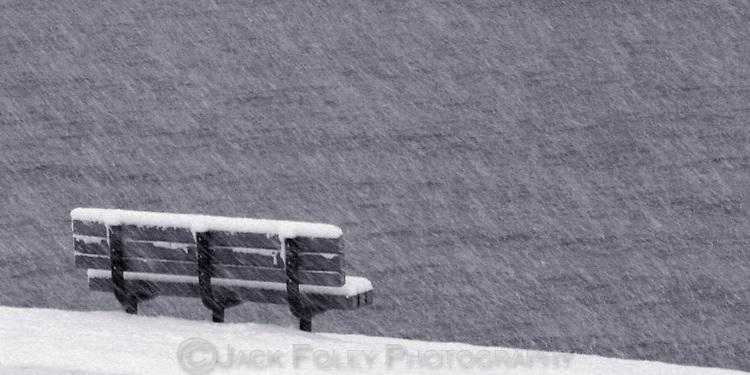 A harborside bench during a violent snow storm.
