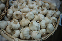 London, UK. 15.11.2014. A basket of garlic bulbs, Borough Market. Photograph © Jane Hobson.