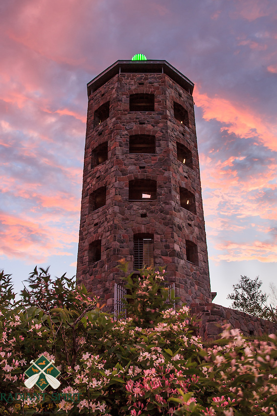 &quot;Enger Tower in Bloom&quot;<br />