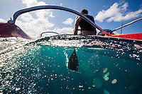 A man paddling an outrigger canoe off the coast of O'ahu.