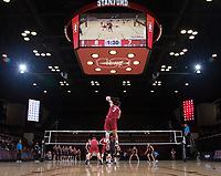 STANFORD, CA - March 3, 2018: Mason Tufuga at Maples Pavilion. The Stanford Cardinal lost to Pepperdine, 3-0.