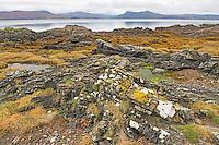 Coastline on Isle of Skye