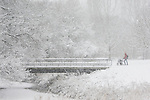 A person with a red jacket pushes a baby stroller through a snowstorm in the Erasmuspark in Amsterdam, the Netherlands.
