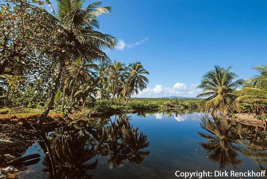 Dominikanische Republik, Flussmündung bei Nagua