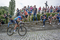 2nd passage Kapelmuur (muur van Geraardsbergen): a very strong world champion Peter Sagan (SVK/Bora Hansgrohe) is the first one up the infamous climb <br /> <br /> Binckbank Tour 2017 (UCI World Tour)<br /> Stage 7: Essen (BE) > Geraardsbergen (BE) 191km