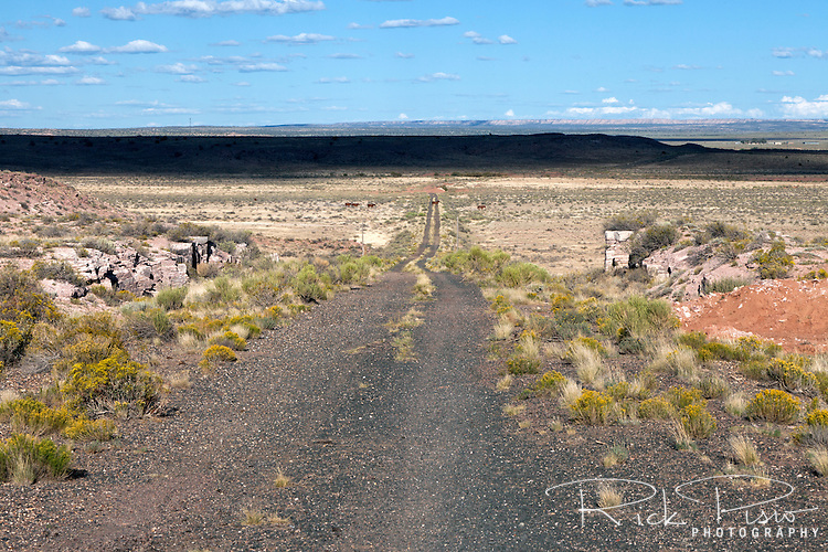 An abandoned and forgotten section of Route 66 in Arizona east of the Painted Desert National Park.