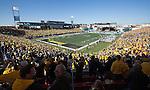 Stadium - Fans