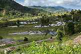 INDONESIA, Flores, a valley filled with planted fields of rice and produce in Waturaka Village