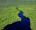 Aerial view of the Florida's south west coast.showing water, mangroves and Everglades..File #WX3P 6494