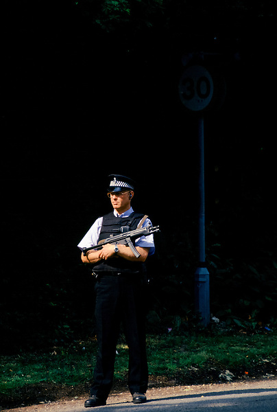 Armed police security in the UK
