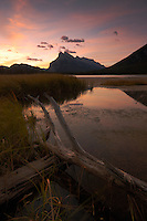 Dead tree in vermillion lakes during colorful sunrise over Mount Rundle and Tunnel Mountain