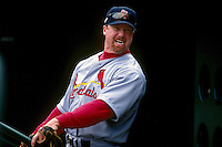 SAN FRANCISCO, CA - Portrait of Mark McGwire of the St. Louis Cardinals waits in the dugout during a game against the San Francisco Giants at Candlestick Park in San Francisco, California in 1998. Photo by Brad Mangin