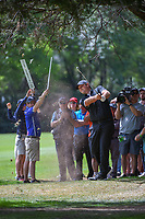 Patrick Reed (USA) hits his second shot from the trees on 11 during round 2 of the World Golf Championships, Mexico, Club De Golf Chapultepec, Mexico City, Mexico. 2/22/2019.<br /> Picture: Golffile | Ken Murray<br /> <br /> <br /> All photo usage must carry mandatory copyright credit (&copy; Golffile | Ken Murray)