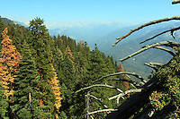 Stock photo: Gorgeous view of Sierra Nevada peaks of Sequoia national park as seen from the Moro Rock.