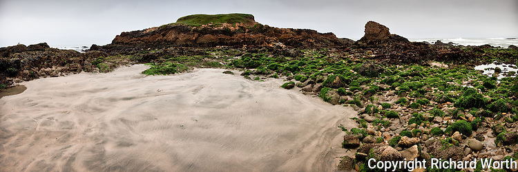 This large rocky outcrop at Pescadero State Beach is usually surrounded by water, but an extreme low tide provides a whole new view.