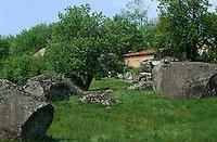 Europe/France/Midi-Pyrénées/81/Tarn/Massif du Sidobre (650 Mètres): Env du rocher tremblant de Sept-Faux de la Rouquette