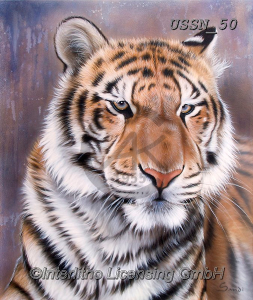 Sandi, REALISTIC ANIMALS, REALISTISCHE TIERE, ANIMALES REALISTICOS, paintings+++++,USSN50,#a#, EVERYDAY ,tiger,tigers, ,puzzles