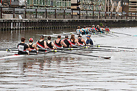 Gloucester Regatta 2015<br /> To purchase this photo, or to see pricing information for Prints and Downloads, click the blue 'Add to Cart' button at the top-right of the page.