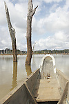 Dugout canoe navigating between dead trees on the Brokopondo reservoir, Suriname.  The man-made lake was hastily created by flooding a vast acreage of jungle without any prior logging and evacuation of animals and is reputed to be polluted by mercury from the mines..