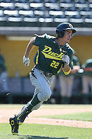 Austin Grebek (22) of the Oregon Ducks runs the bases during a game against the Southern California Trojans at Dedeaux Field on April 18, 2015 in Los Angeles, California. Oregon defeated Southern California, 15-4. (Larry Goren/Four Seam Images)