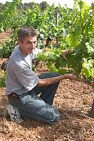 Philippe Michel, Maitre de Chais, cellar master. Domaine du Mas de Daumas Gassac. in Aniane. Languedoc. Vine leaves. France. Europe. Vineyard.