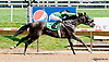 Managed Account winning at Delaware Park on 7/17/13